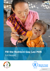 Fill the Nutrient Gap Lao PDR-September 2017